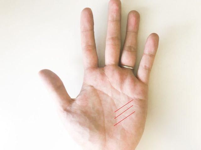 手相 変化 期間 周期 左手 写真 運命 つけ根が血管が浮いている 血色が悪い 薬指に指輪