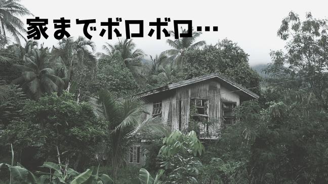 トトロ 考察 サツキ メイ 都市伝説 カンタ おばあちゃん 仕事 ジャングル 廃墟 ボロボロ