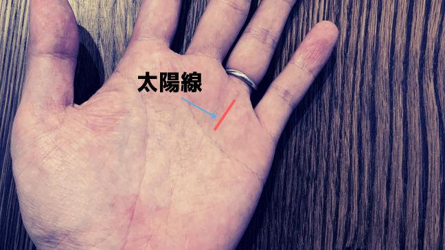 手相 太陽線 2本 長い 複数 スター フィッシュ 意味 青い矢印 黒い文字