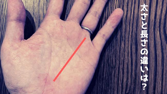 手相 太陽線 2本 長い 複数 スター フィッシュ 意味 長い赤い線が伸びる 白い文字