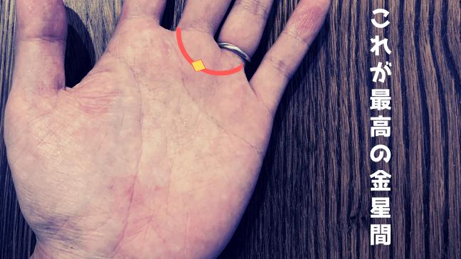 手相 金星環 二重 芸能人 異性 デザイナー 中心にひし形のシワが リングみたいになっている