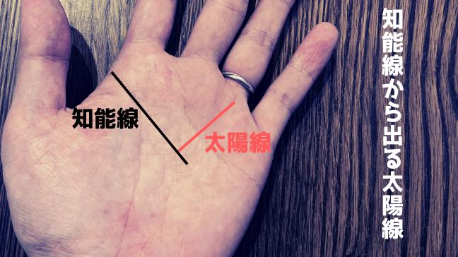 手相 太陽線 2本 長い 複数 スター フィッシュ 意味 ふたつの文字 色違い