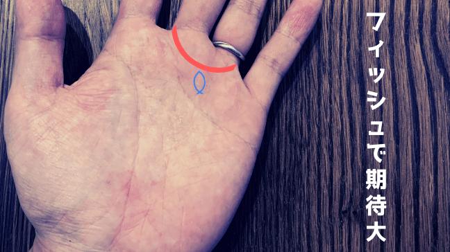手相 金星環 二重 芸能人 異性 デザイナー 運気アップで仕事をゲット!