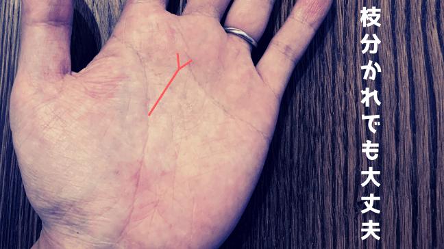 手相 向上線 希望線 中指 枝分かれ クロス 長い シワが二股に 割れていても問題なし