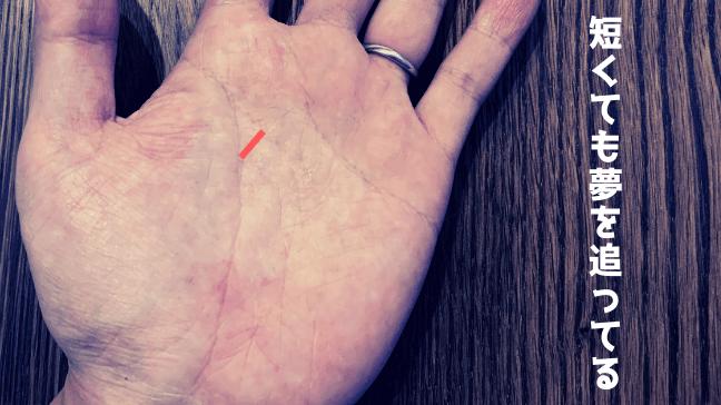手相 向上線 希望線 中指 枝分かれ クロス 長い 短いシワ 太いなら問題なし