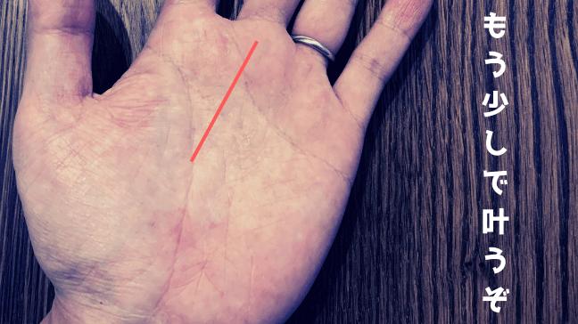手相 向上線 希望線 中指 枝分かれ クロス 長い 届きそうで届かない あと一歩
