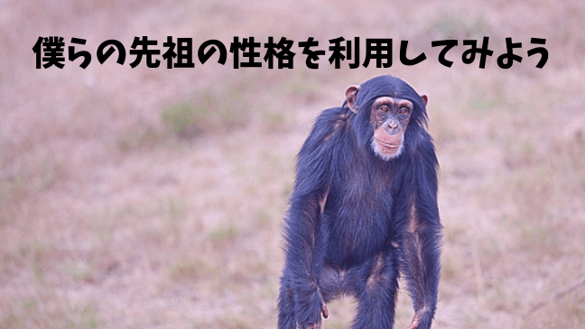 仕事 人間関係 うまくいかない ストレス 辛い 孤立 猿が立って移動している 草原